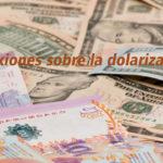 Reflexiones sobre la dolarización